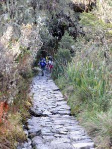 Inca Trail Peru. Wandelend door de dichte vegetatie