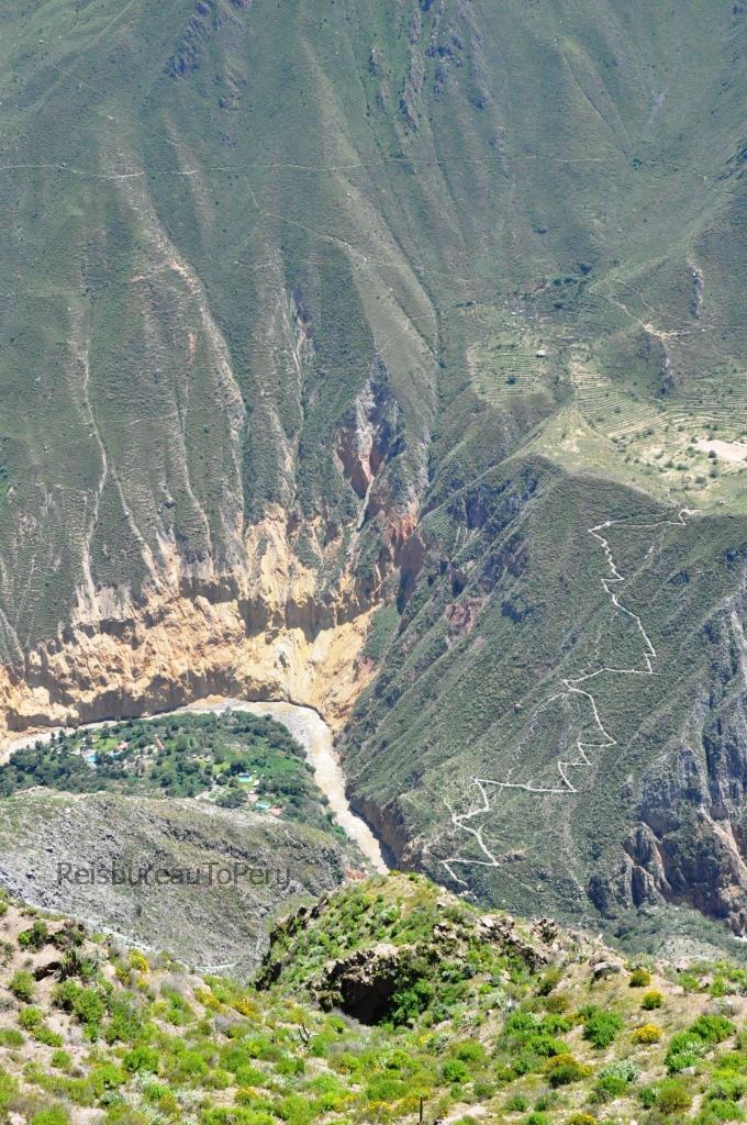 Zigzagpaadje in de Colca Canyon
