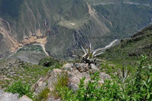 Bovenaanzicht Colca Canyon