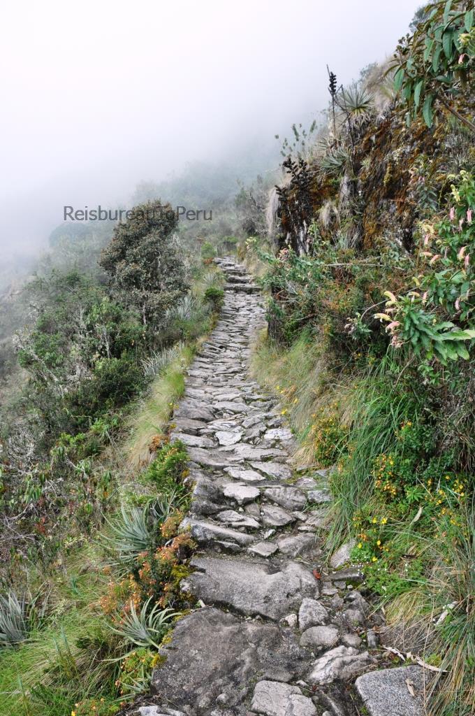 Typisch paadje Inca Trail