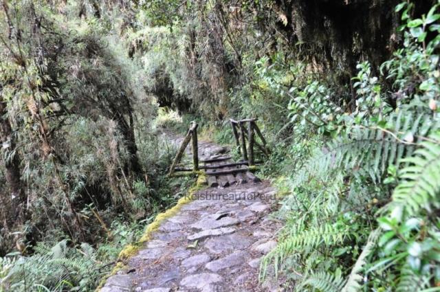 Houten bruggetje Inca Trail